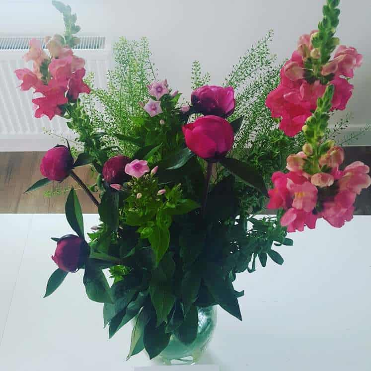 Freddies Flowers Review – The Best Flowers in a Box Delivery Service