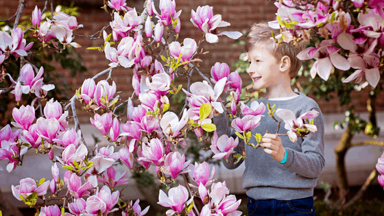 The Best Creative Activities for Spring