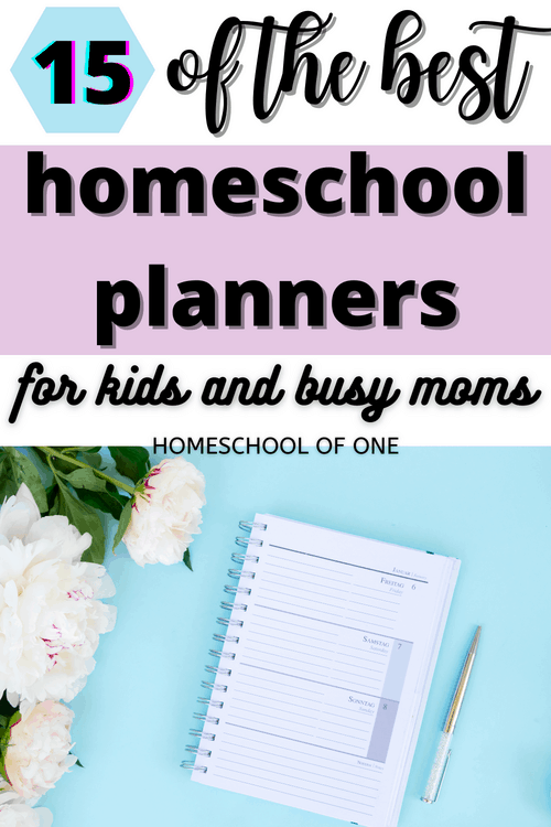 15 of the best homeschool planners for both kids and busy homeschool moms