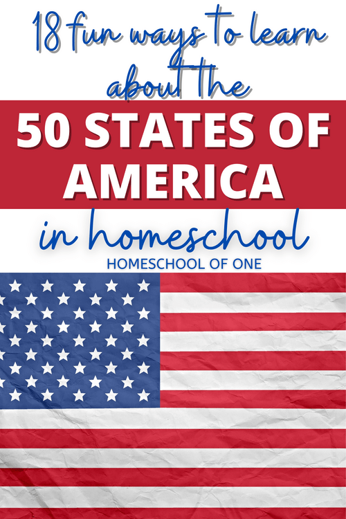 18 Fun Ways to Learn about the 50 states of America in your homeschool #america #50states #geography