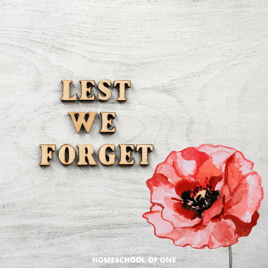 Holiday Activities - Remembrance Day