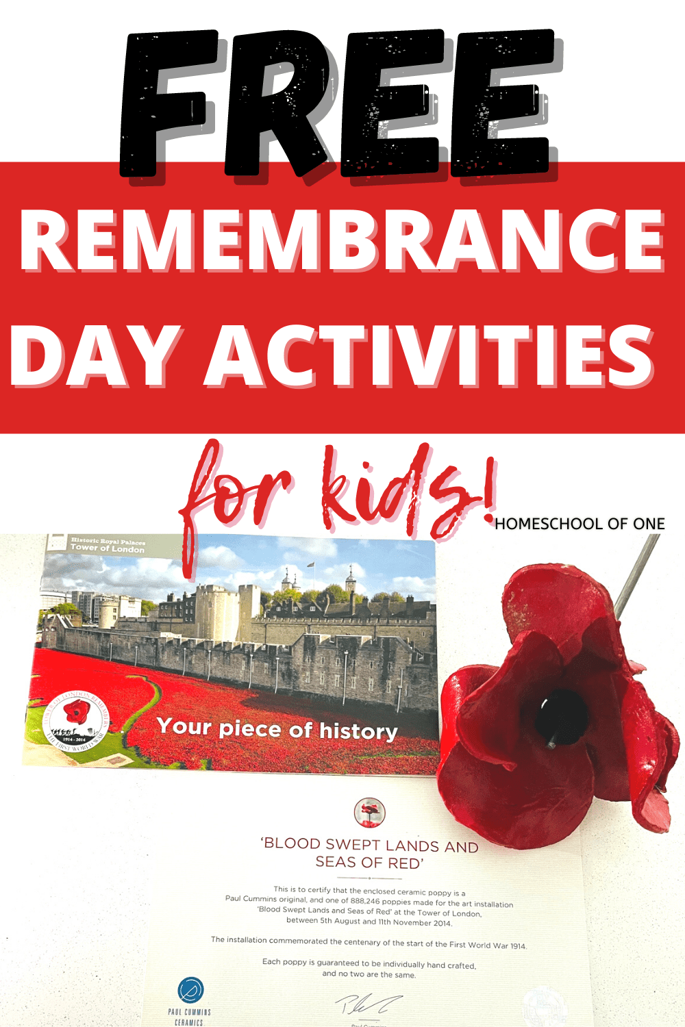 Free Remembrance Day activities for homeschool. Free unit studies, Remembrance Day books for kids, videos and more #remembranceday #wwI #history #homeschooling #veteransday