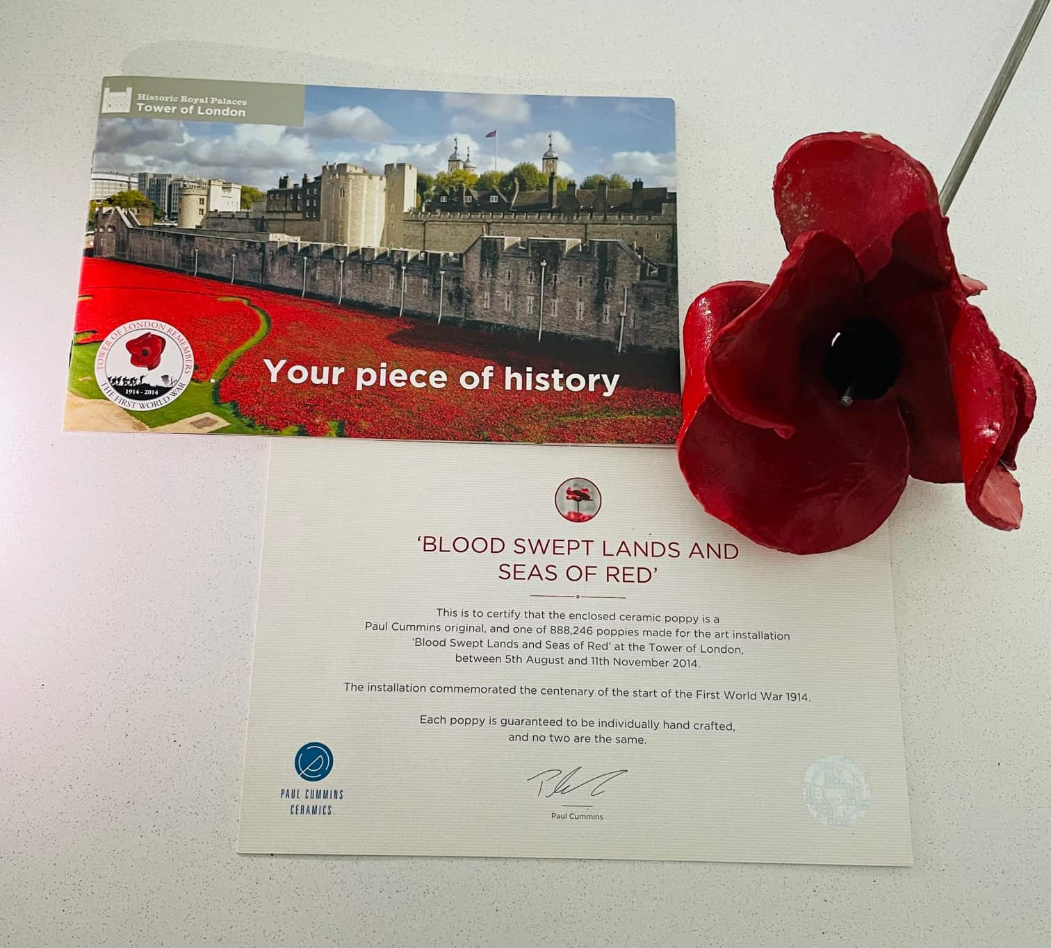 FREE Remembrance Day Activities For Kids of All Ages