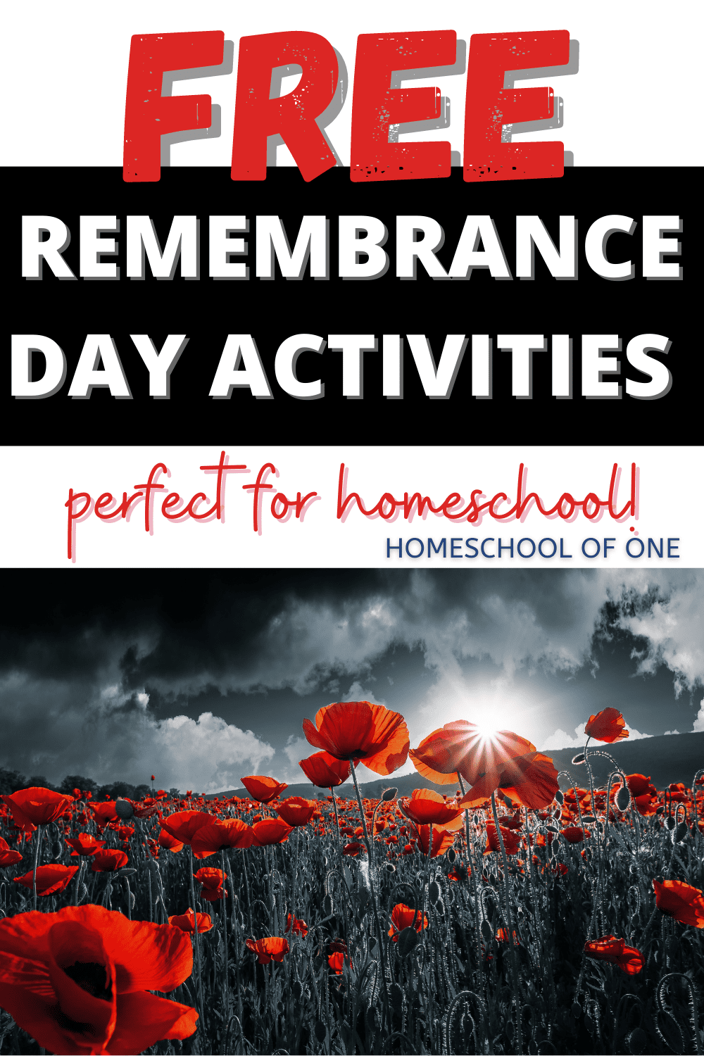 Free Remembrance Day activities for homeschool. Free unit studies, Remembrance Day books for kids, videos and more #remembranceday #wwI #history #homeschool